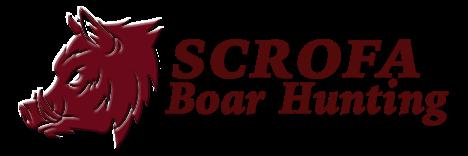 Scrofa Boar Hunting